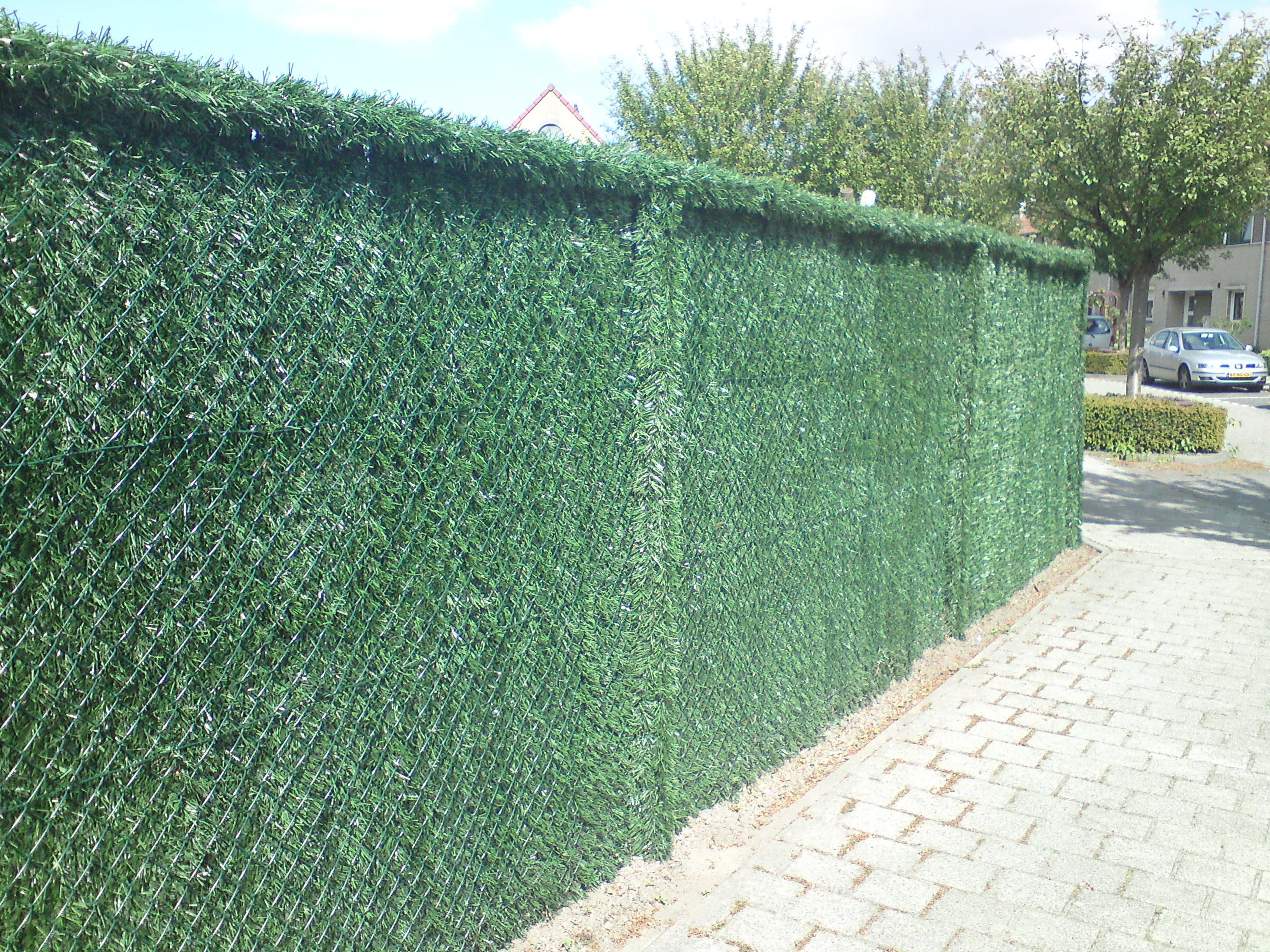 draadkant palen bekleed, kunsthaag safegarden, Antwerpen