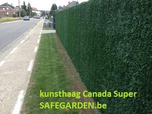 kunsthaag Canada Super - Safegarden.be - Alle privacy-toepassingen voor de tuin